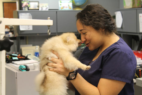 Pet Clinic cares for all pets for students and staff