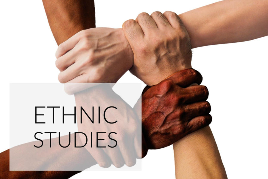 Ethnic studies elective classes offered next year