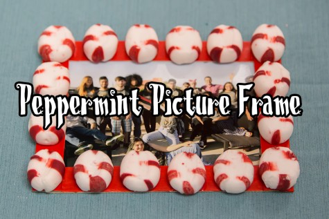 Peppermint Picture Frame