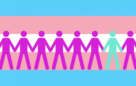 Transgender a spectrum of identity, a reality and lifestyle
