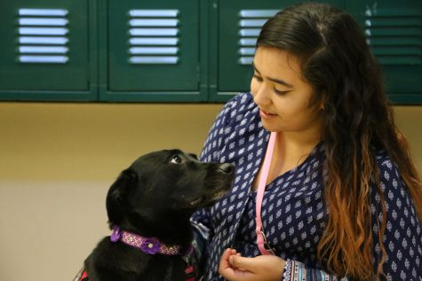 Senior Yesenia Castelan is the first student at Akins to have a service dog. Castelan has started a new organization called Endurance of Life, focusing on anxiety, depression and other mental health issues.