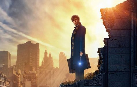 Fantastic Beasts lets down Harry Potter fans