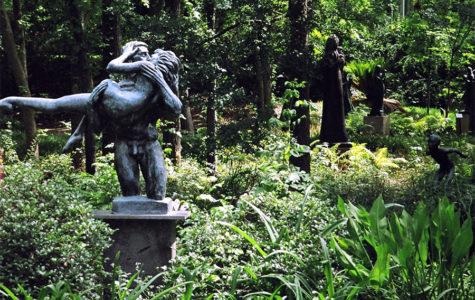 Exploring Austin — Barton Springs: Sculpture Garden