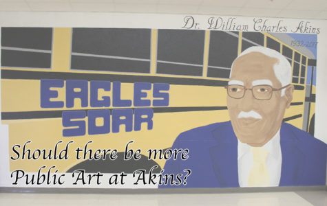 Should there be more public art in Akins High School?