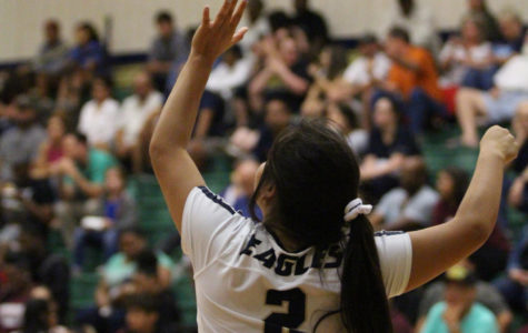 Volleyball team has competitive playoff mindset