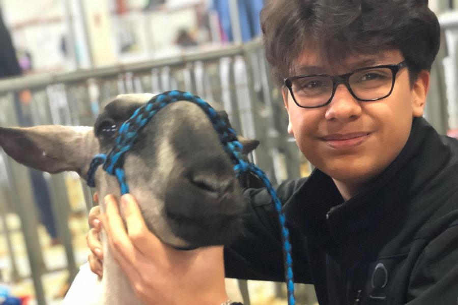 Sophomore+Alejandro+Santos+shows+a+market+goat