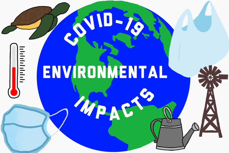 Environmental effects of COVID-19 provide hope for future
