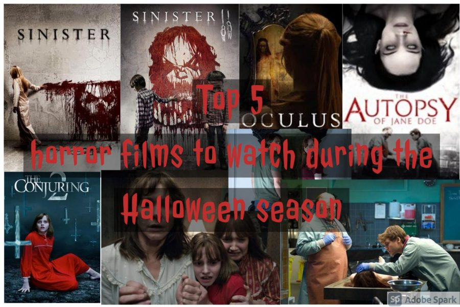 This collage of photos represents each horror movie talked about on this list. These movies are all perfect to watch during the Halloween season to get you into the holiday spirit.